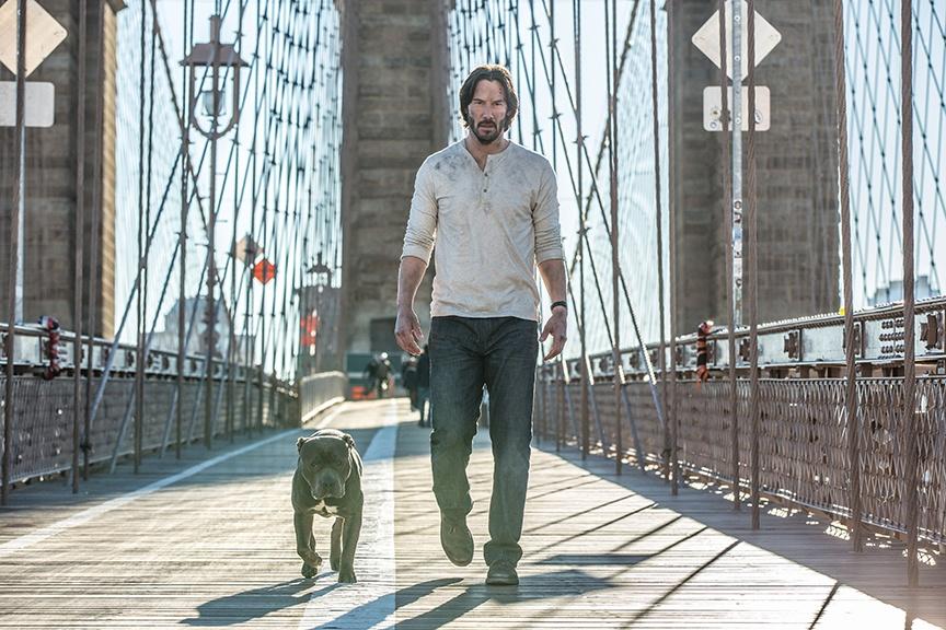John Wick: Chapter 2. John mit Hund.